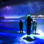 Brighton SEA LIFE launches £2.7 million new attraction Day & Ni